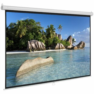 Pull Down Home Theater Movie White 100 Manual Projection Screen