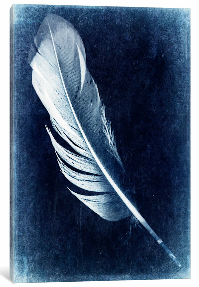 East Urban Home Inverted Feather I Painting Print On Canvas Wayfair
