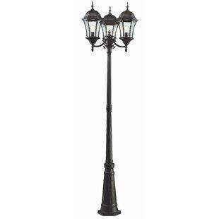 Best Price Lyles Outdoor 3-Light 90 Post Light By Astoria Grand