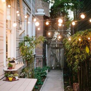 Ebern Designs Outdoor Fairy String Lights
