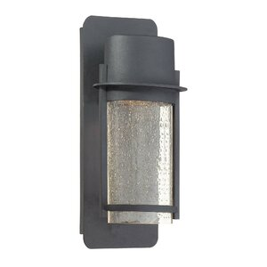 Janke 1-Light Outdoor Sconce