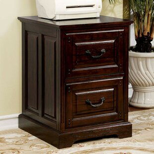 Mcelrath Transitional 2-Drawer Vertical Filing Cabinet by Charlton Home
