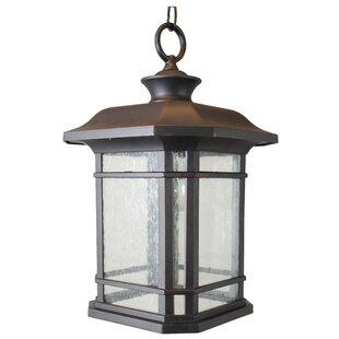 Charlton Home Falstaff 1-Light Outdoor Hanging Lantern