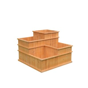 August Grove Gordonsville Multi Level 3 ft x 3 ft Solid Wood Raised Garden