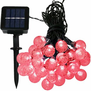 20 ft. 30-Light Globe String Light by The Holiday Aisle