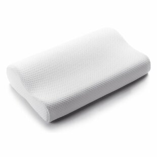 Contour Memory Foam Pillow (Set of 2)