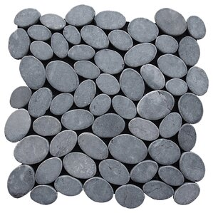 coin random sized natural stone pebble tile in grey