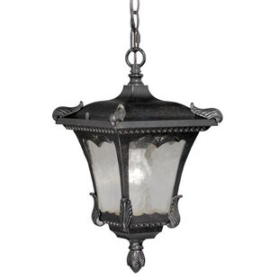 Astoria Grand Earl 1-Light Outdoor Hanging Lantern