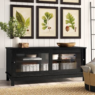 Inexpensive Kaczor TV Stand for TVs up to 55 by Birch Lane™ Heritage Reviews (2019) & Buyer's Guide