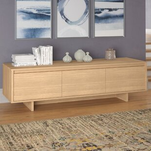 Best Romsey TV Stand for TVs up to 58 by Wrought Studio Reviews (2019) & Buyer's Guide