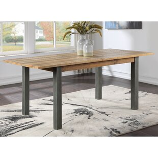Calvo Extendable Dining Table By Williston Forge