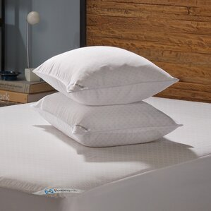 Posturepedic Allergy Protection Zippered Pillow Protector (Set of 2) by Sealy