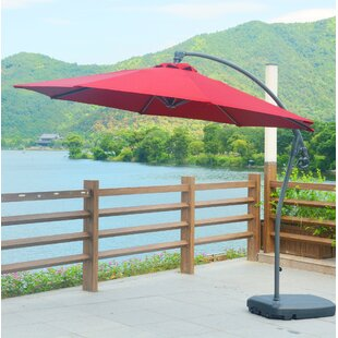 Darby Home Co Meg 10' Cantilever Umbrella