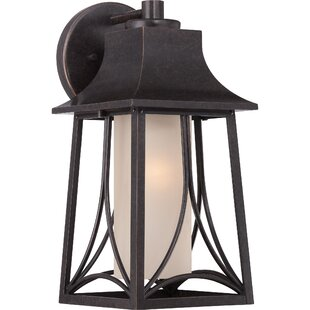 Darby Home Co Stoutsville 1-Light Outdoor Wall Lantern