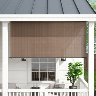 Deshotel Semi-Sheer Outdoor Solar/Roller Shade by Wade Logan