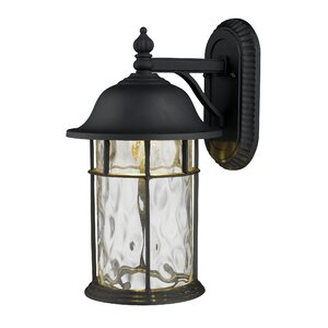 Lapuente 1-Light Outdoor Wall Lantern