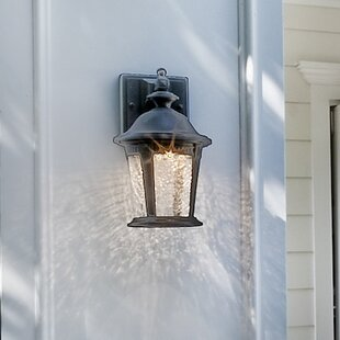 Best Choices Arsenault 1-Light Outdoor Wall Lantern By Darby Home Co