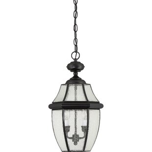 Mellen 2-Light Outdoor Hanging Lantern By Three Posts Outdoor Lighting
