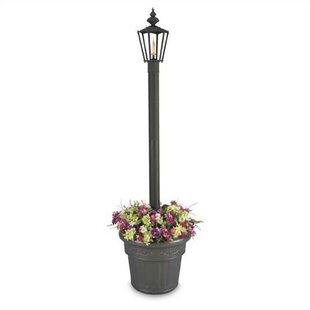 Patio Living Concepts Islander 1-Light 80