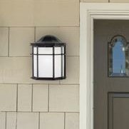 Westwick Exterior 1-Light Outdoor Flush Mount (Set of 2) by Winston Porter
