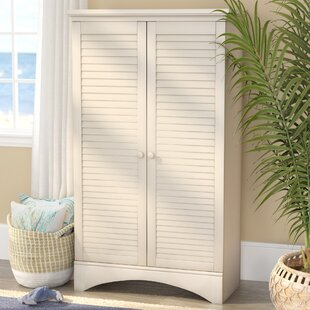 Pinellas 2 Door Accent Cabinet