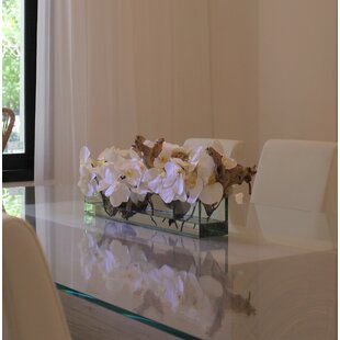 Phalaenopsis Driftwood Floral Arrangements and Centerpieces in Glass Planter