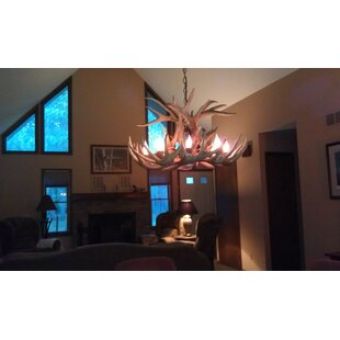 Loon Peak Doliya Antler Whitetail Single Tier 6-Light We have associated to option Chandelier