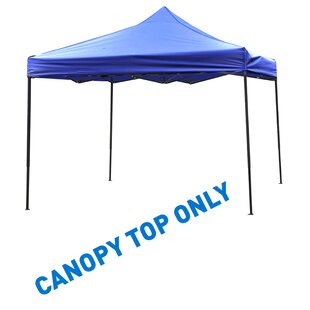 9.6' Ft. W x 9.6' Ft. D Canopy by Trademark Innovations
