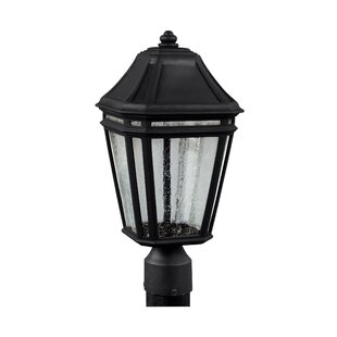 Maxine Outdoor Lantern Head by Darby Home Co