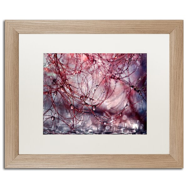 Trademark Art Beautiful Chaos By Beata Czyzowska Young Matted Framed Print On Canvas Wayfair