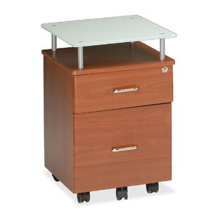 Mayline Group Vision 2-Drawer Mobile Vertical Filing Cabinet
