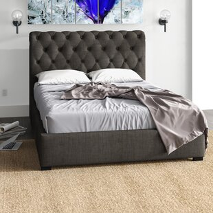 Starkes Upholstered Ottoman Bed By Ophelia & Co.