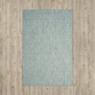 Savings Brodie Aqua/Gray Indoor/Outdoor Area Rug Great Price