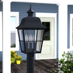Darby Home Co Danielson Outdoor 3-Light Lantern Head
