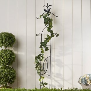 Birch Lane™ Twisting Vines Trellis
