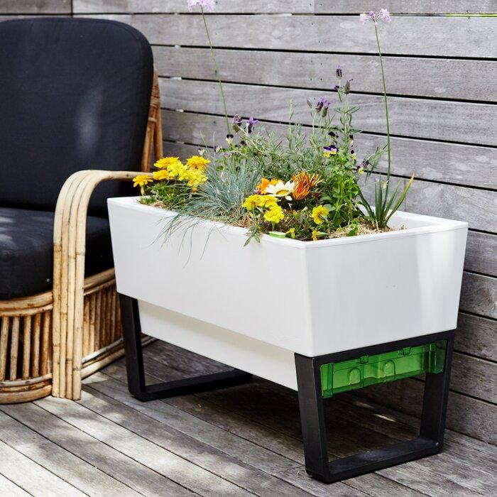 Glowpear Self Watering Plastic Planter Box Reviews Wayfair Ca