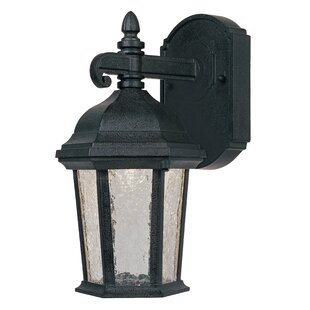 Designers Fountain Abbington 1-Light Outdoor Wall Lantern