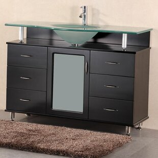 Mateo 48 Single Bathroom Vanity Set by Home Loft Concepts