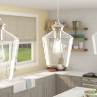 Price comparison Driftwood 1-Light Cone Pendant ByBreakwater Bay