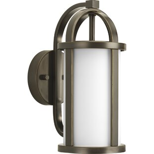 Triplehorn 1-Light Medium Wall Lantern by Alcott Hill