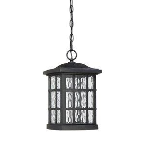 Lockett 1-Light Outdoor Hanging Lantern
