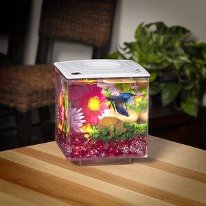0.75 Gallon Betta Cube Aquarium Tank