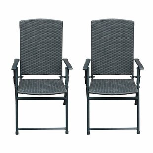 Flannery Folding Patio Dining Chair (Set of 2)