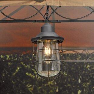 Plug In Outdoor Hanging Light Wayfair