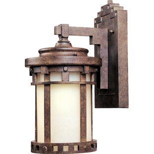 Loon Peak Casimir 1-Light Outdoor Wall Lantern