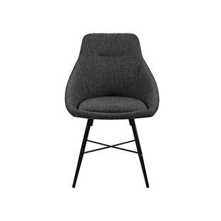 Amir Side Chair (Set of 2) by Langley Street