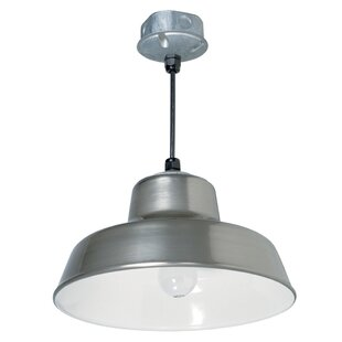 Best Choices Skyla Hanging Reflector 1-Light Outdoor Pendant By Longshore Tides