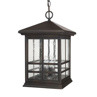 Great choice Macy 4-Light Outdoor Hanging Lantern By Latitude Run