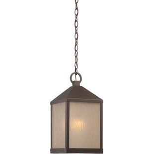 Affordable Price Cedar 1-Light Outdoor Hanging Lantern By Loon Peak