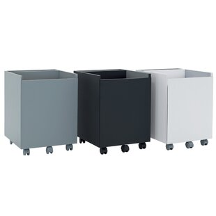 Niche 2-Drawer Mobile Vertical Filing Cabinet by Calico Designs